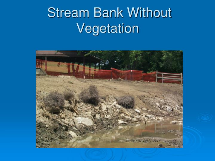 Stream Bank Without Vegetation