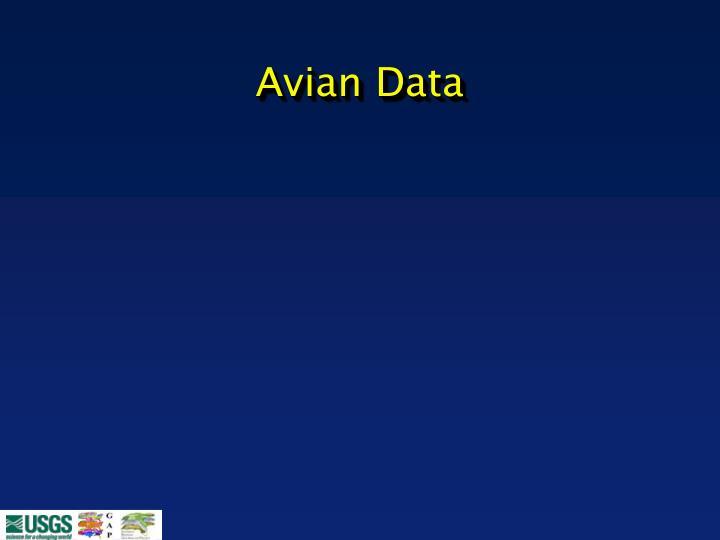 Avian Data