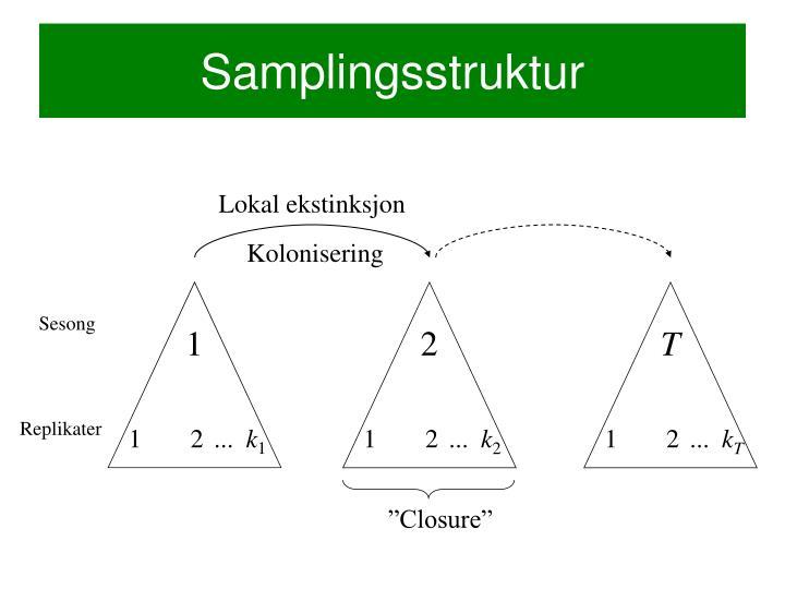 Samplingsstruktur
