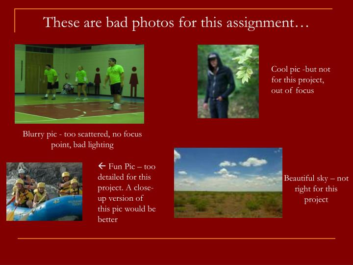 These are bad photos for this assignment…