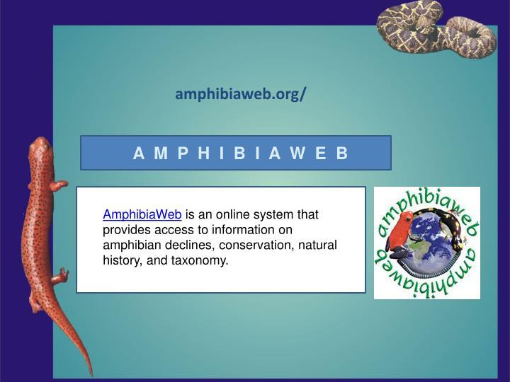amphibiaweb.org/