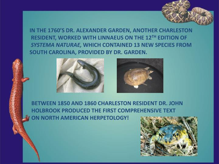 IN THE 1760'S DR. ALEXANDER GARDEN, ANOTHER CHARLESTON
