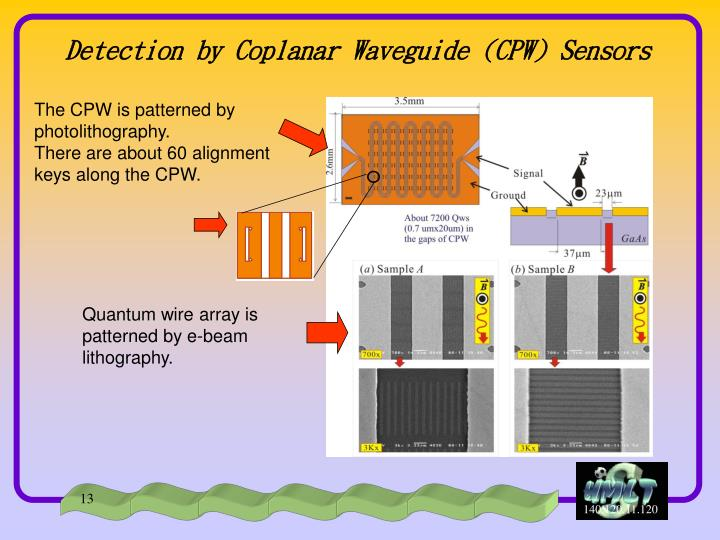 Detection by Coplanar Waveguide (CPW) Sensors