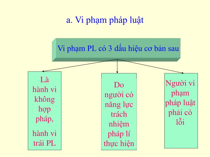 a. Vi phm php lut