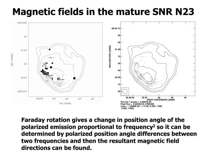 Magnetic fields in the mature SNR N23