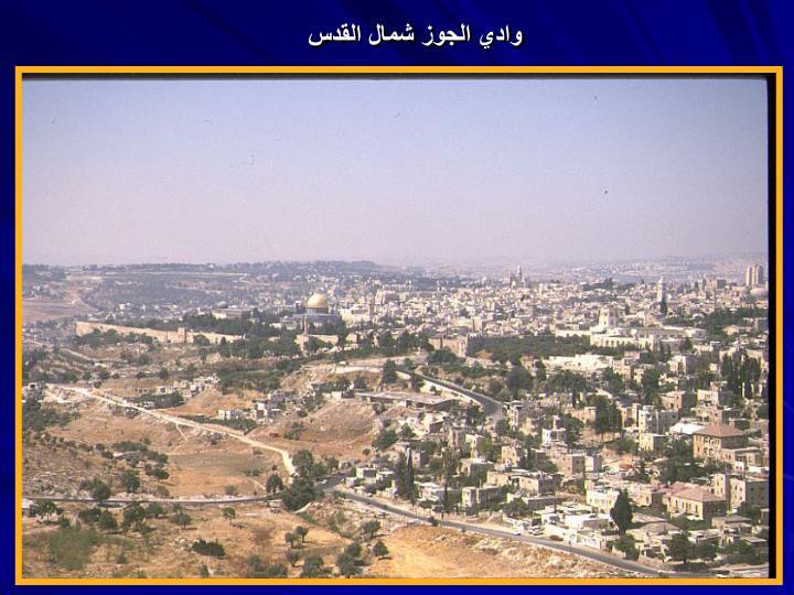 وادي الجوز شمال القدس