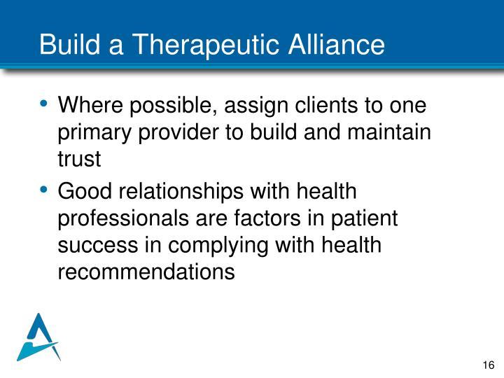 Build a Therapeutic Alliance