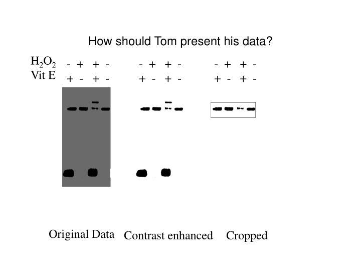 How should Tom present his data?