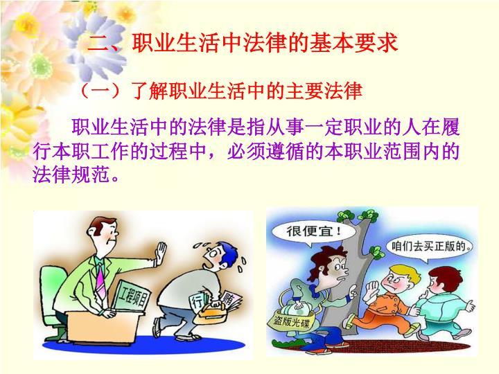 二、职业生活中法律的基本要求