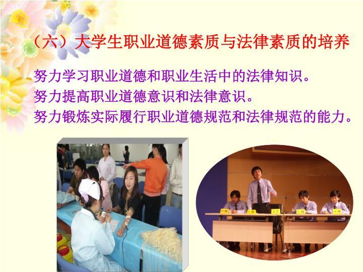 (六)大学生职业道德素质与法律素质的培养