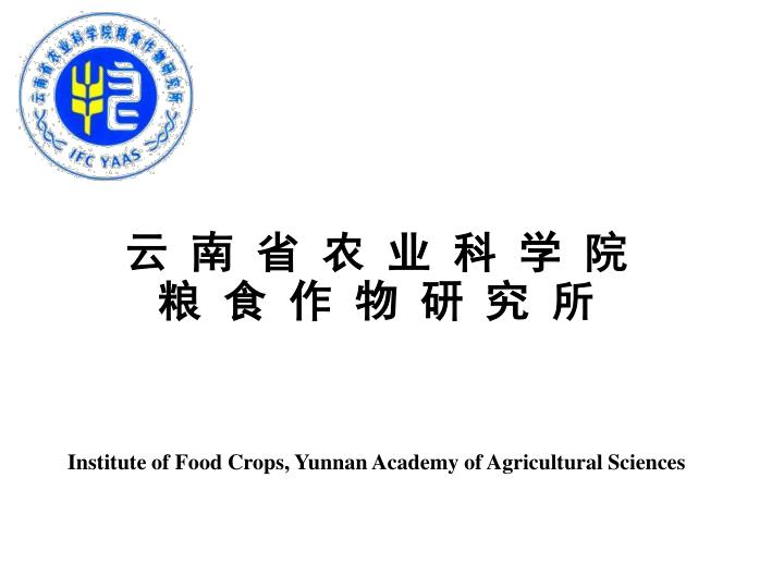 Institute of food crops yunnan academy of agricultural sciences