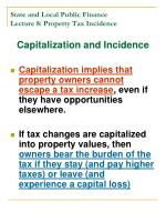 state and local public finance lecture 8 property tax incidence15