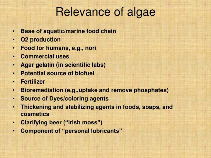 Relevance of algae