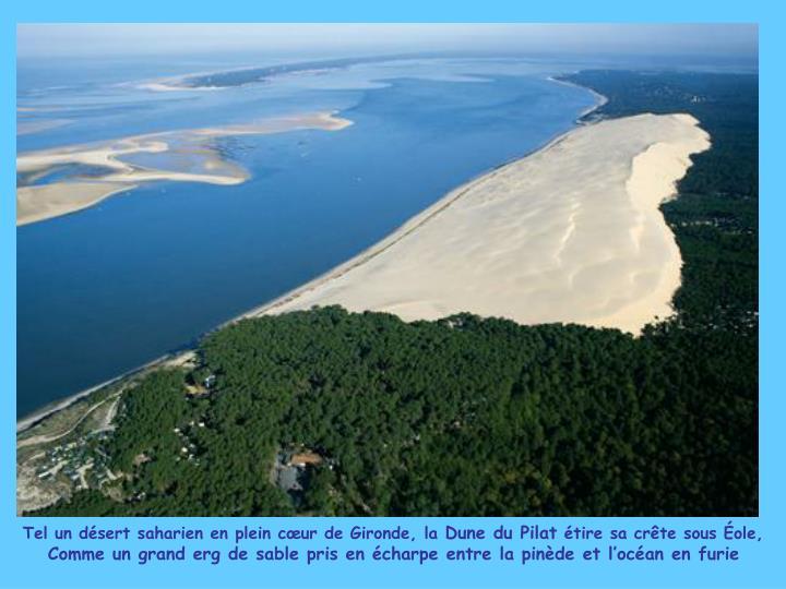 Tel un désert saharien en plein cœur de Gironde, la