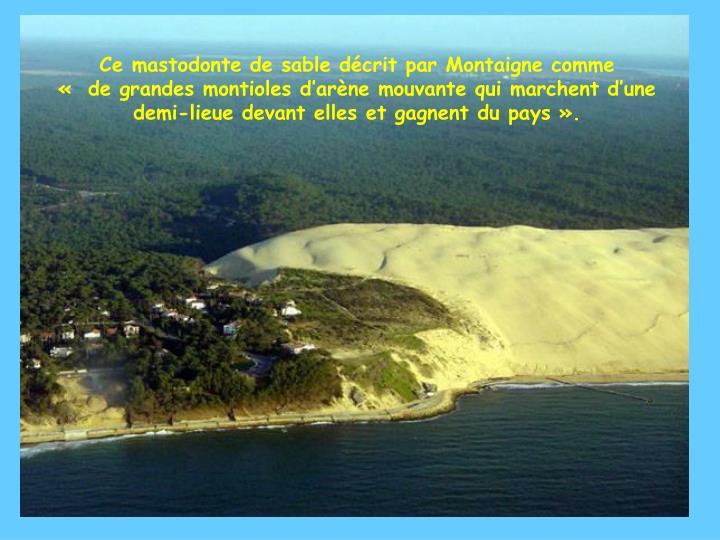 Ce mastodonte de sable décrit par Montaigne comme          « de grandes montioles d'arène mouvante qui marchent d'une demi-lieue devant elles et gagnent du pays».