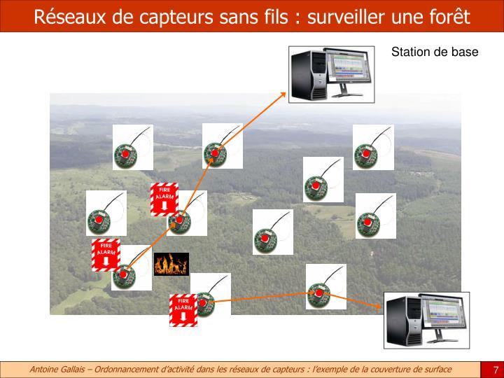 Réseaux de capteurs sans fils : surveiller une forêt