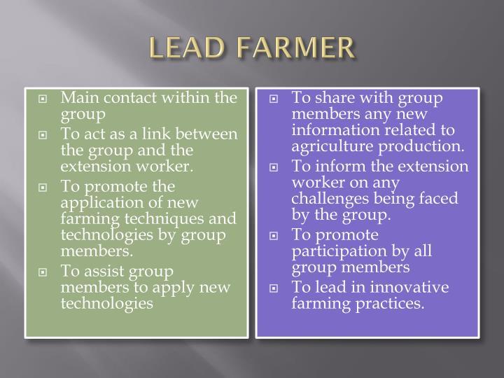 LEAD FARMER