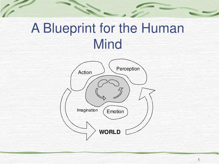 A Blueprint for the Human Mind