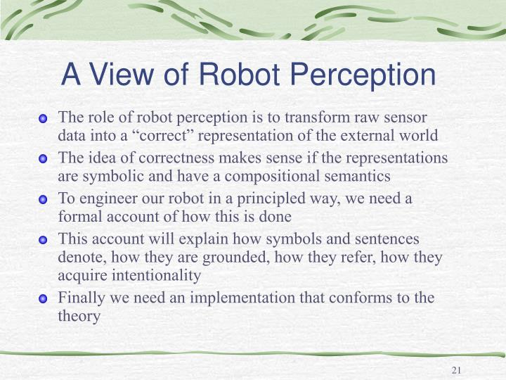 A View of Robot Perception