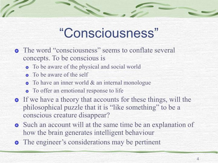 """""""Consciousness"""""""