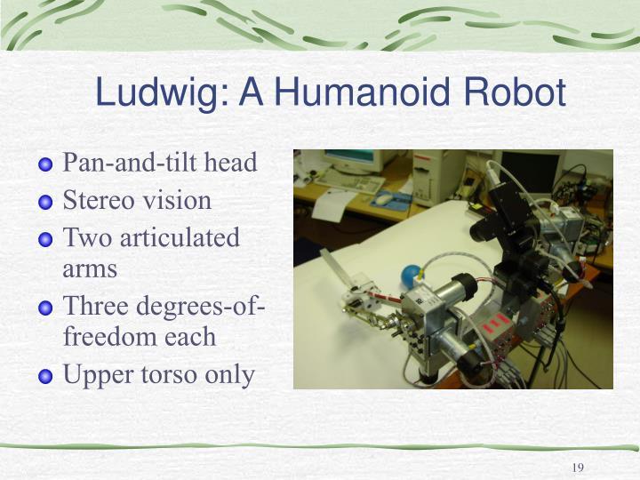 Ludwig: A Humanoid Robot