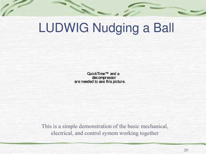 LUDWIG Nudging a Ball