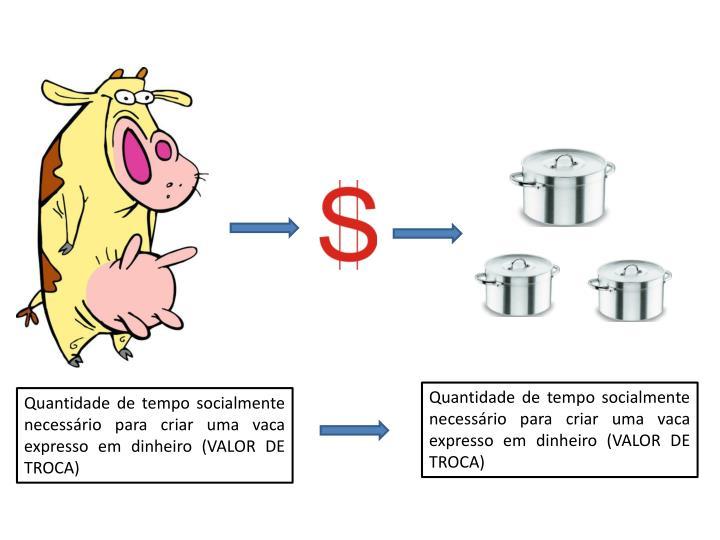 Quantidade de tempo socialmente necessário para criar uma vaca expresso em dinheiro (VALOR DE TROCA)