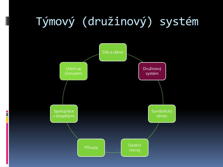 Týmový (družinový) systém