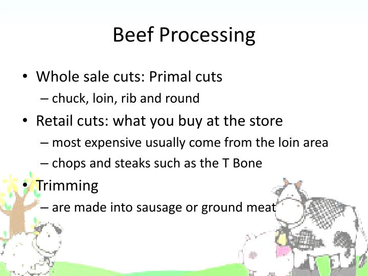 Beef Processing