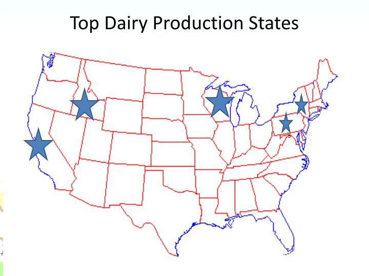 Top Dairy Production States