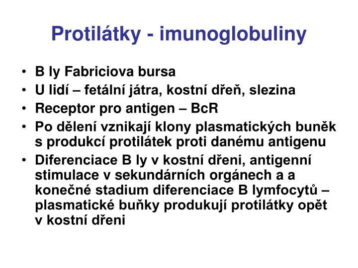 Protilátky - imunoglobuliny