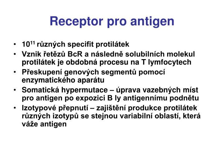 Receptor pro antigen