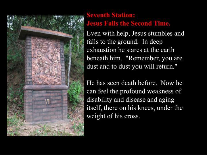 Seventh Station: