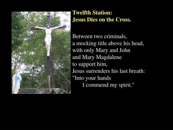 Twelfth Station:
