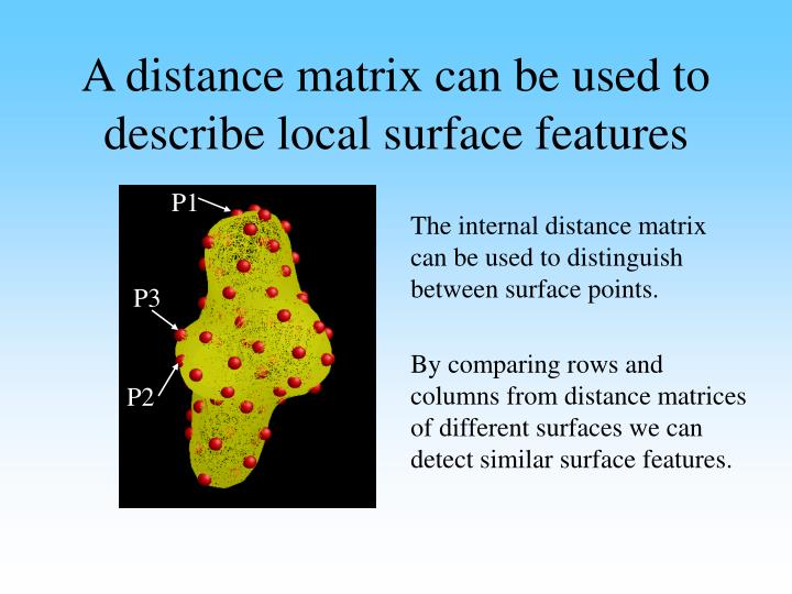 A distance matrix can be used to describe local surface features