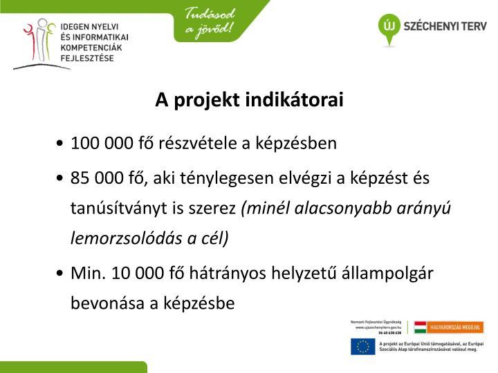 A projekt indikátorai