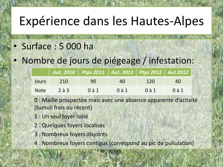 Expérience dans les Hautes-Alpes