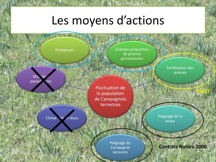 Les moyens d'actions