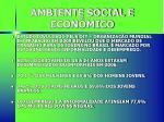 ambiente social e econ mico1