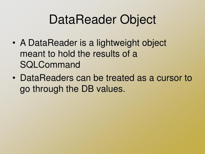 DataReader Object