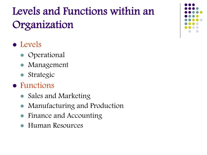 Levels and Functions within an Organization