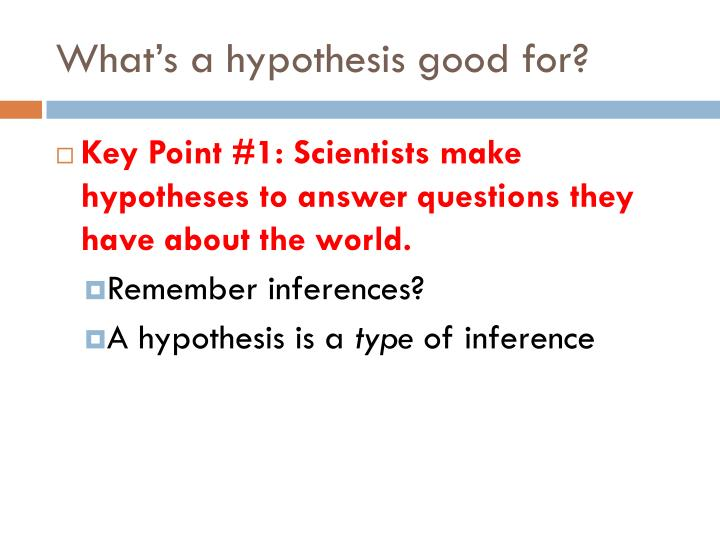 What's a hypothesis good for?
