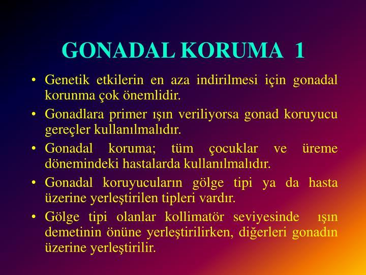 GONADAL KORUMA