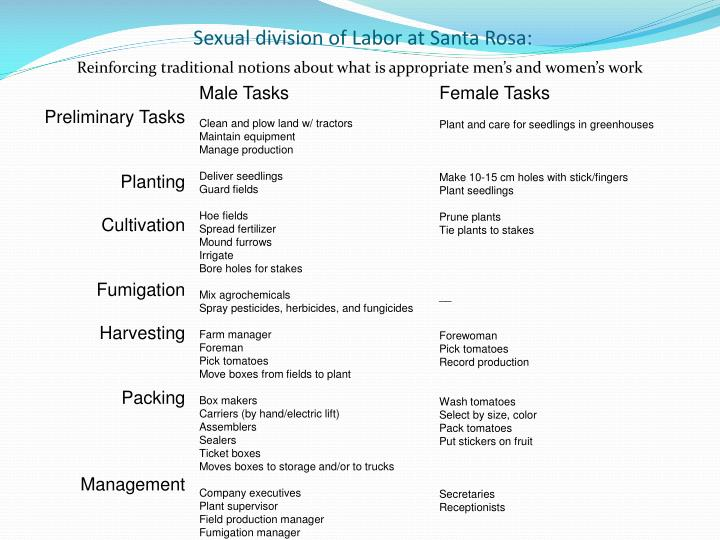 Sexual division of Labor at Santa Rosa: