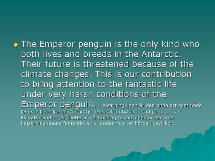 The Emperor penguin is the only kind who both lives and breeds in the Antarctic. Their future is threatened because of the climate changes. This is our contribution to bring attention to the fantastic life under very harsh conditions of the Emperor penguin.