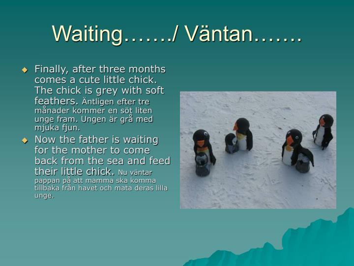 Waiting……./ Väntan…….