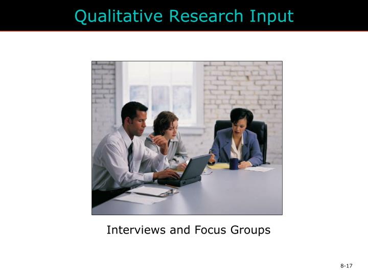 Qualitative Research Input
