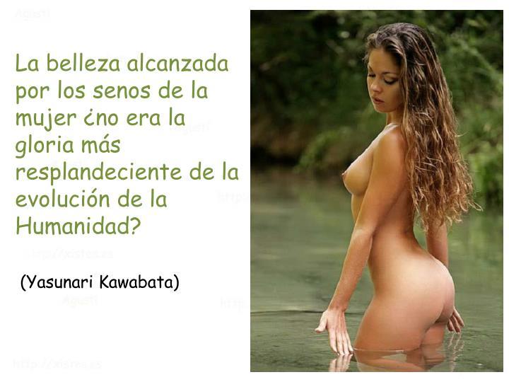 La belleza alcanzada por los senos de la mujer ¿no era la gloria más resplandeciente de la evolución de la Humanidad?