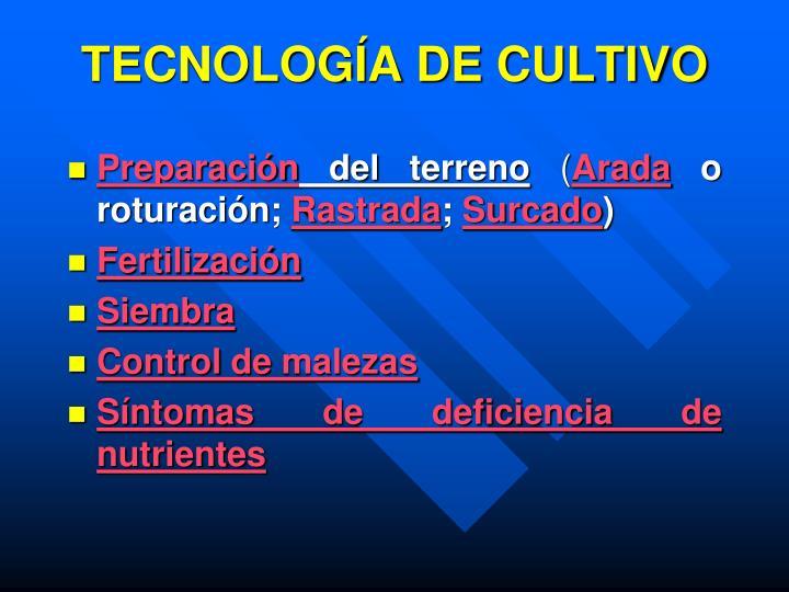 TECNOLOGÍA DE CULTIVO
