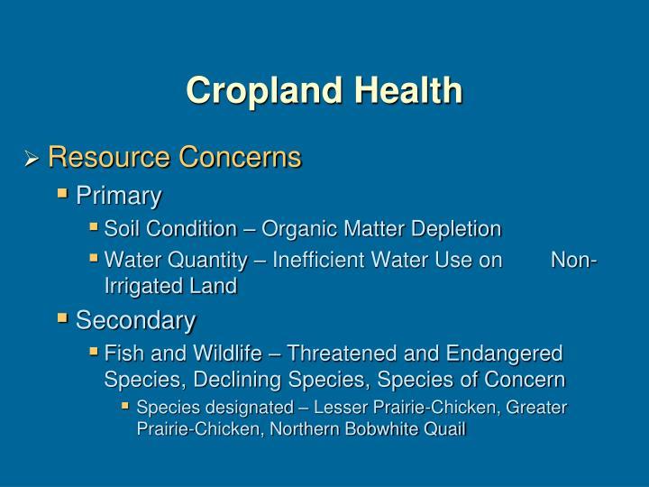 Cropland Health